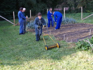 Semis et tonte manuelle du jardin.
